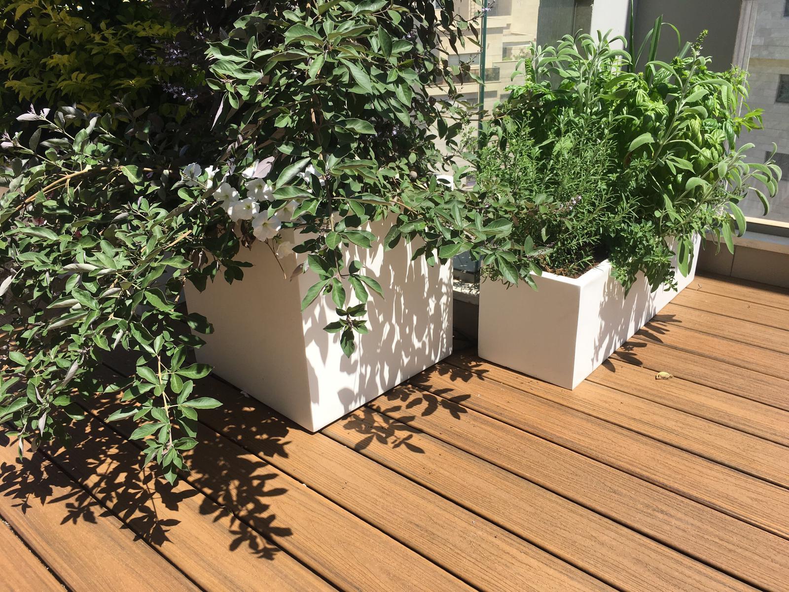 • דק סינטטי למרפסת ומסביב לבריכה בבאר יעקב - TREX דקים סינטטיים